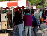 Harpenden Farmers Market